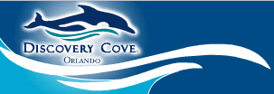 discoverycove
