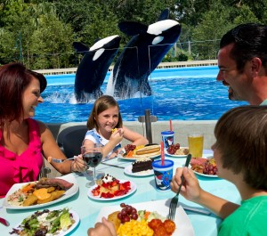 All New Dine With Shamu Experience