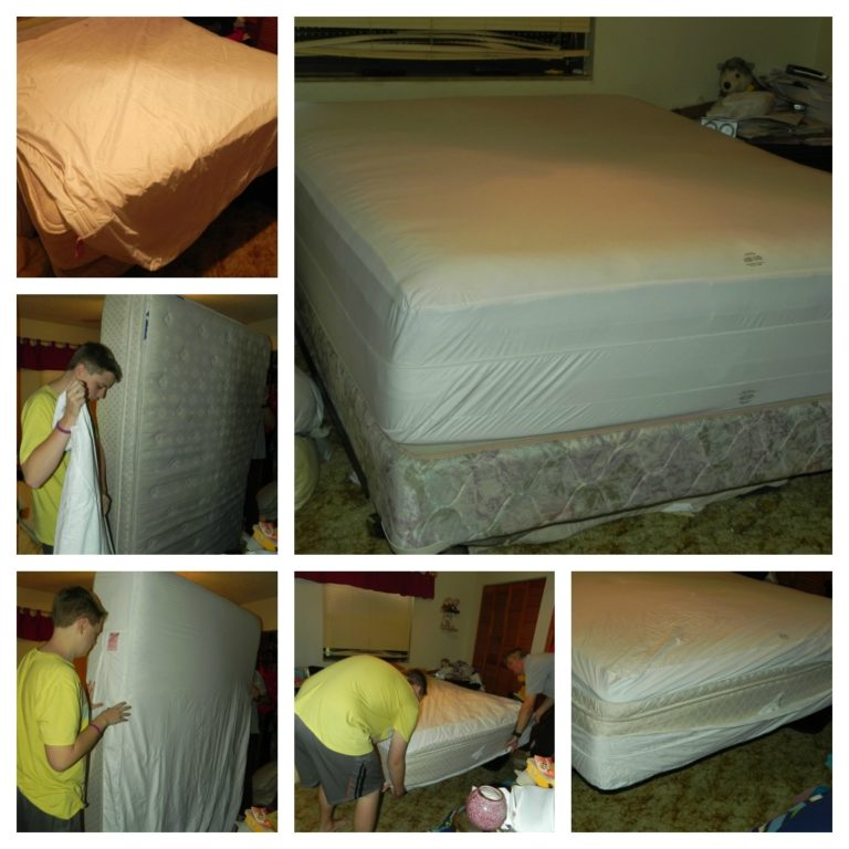 Protect A Bed Complete Mattress Allergy Amp