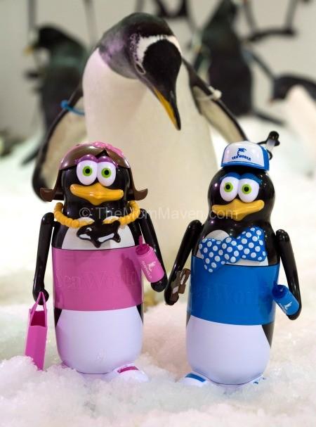 SeaWorld Antarctica Cup that Cares