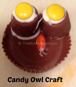 Candy Owl Craft