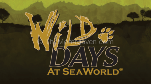 Family Travel-SeaWorld Wild Days