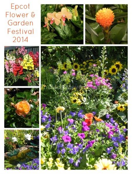 Epcot International Flower Garden Festival 2014 The