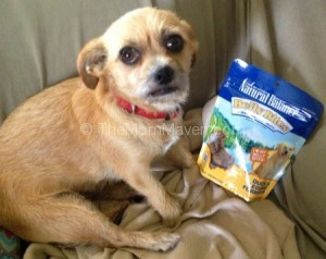Natural Balance Duck And Potato Formula Canned Dog Food