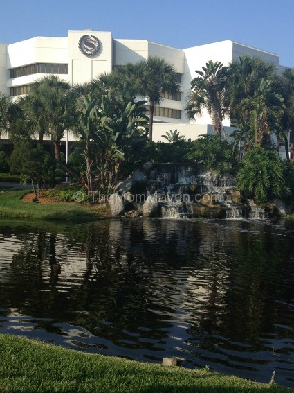 Hotels Lake Buena Vista Disney