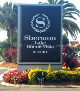 Hotels Near Busch Gardens Tampa Bay Florida