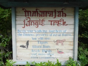 Wandering the Maharaja Jungle Trek at Animal Kingdom