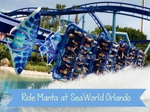 Manta-SeaWorld Orlando