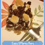 Easy smores bars TheMomMaven.com