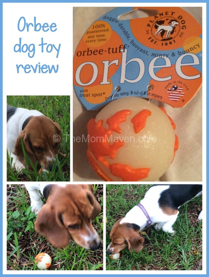 Best Rated Dog Food Canada