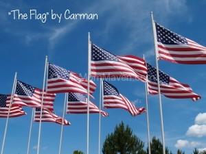 I Pledge Allegiance TheMomMaven.com