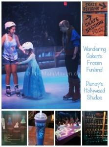 Wandering Oakens Frozen Funland-TheMomMaven.com
