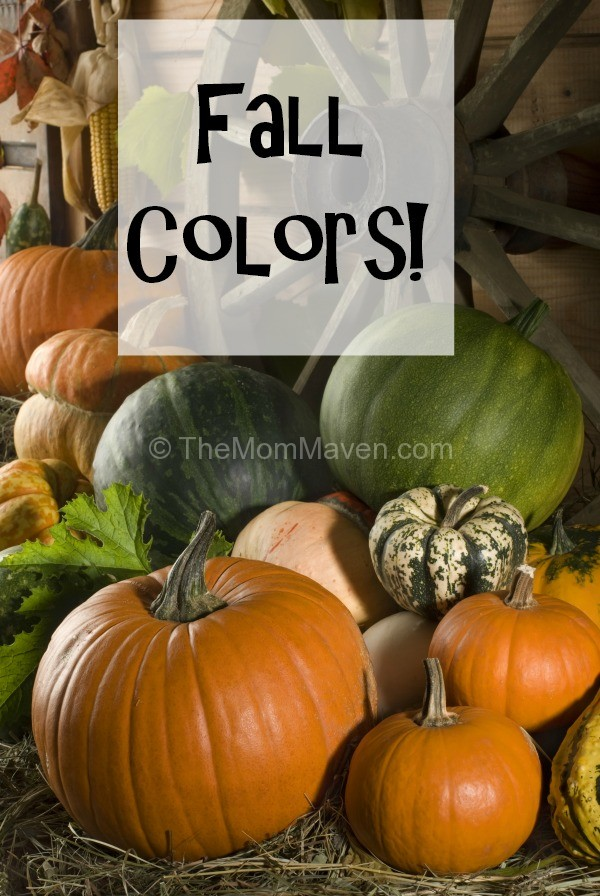 Decorate with Fall Colors-themommaven.com