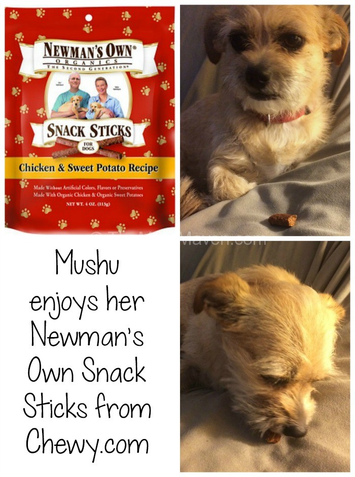 Newman S Own Dog Food Organic Lb Bag