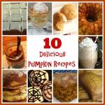 10 Delicious Pumpkin Recipes-TheMomMaven.com