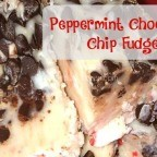 If you have these 5 ingredients and 10 minutes you can whip up this delicious Peppermint Chocolate Chip Fudge. It is a fun and easy sweet treat to add to your Christmas celebration.