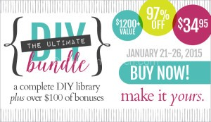Ultimate DIY Bundle