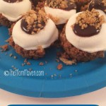 Smores Cups-Easy recipe from TheMomMaven.com