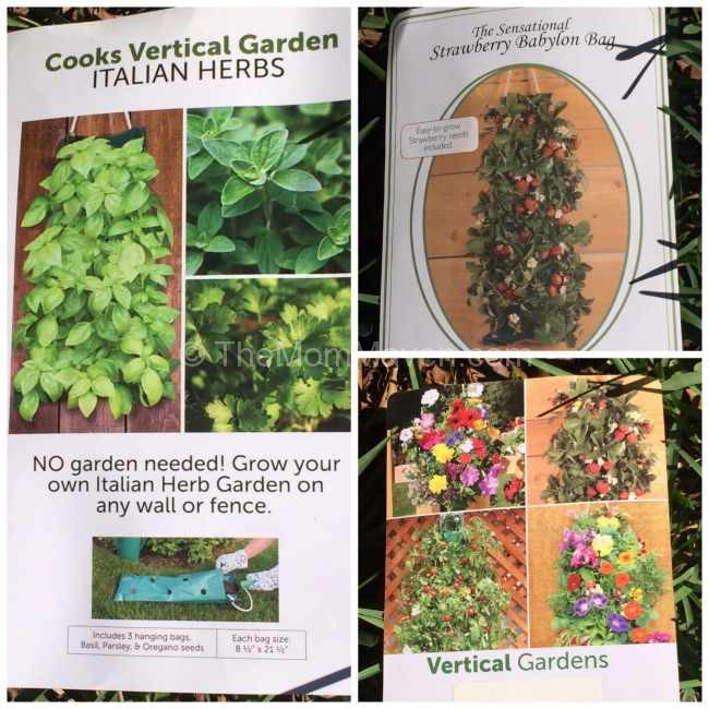 Vertical Gardens from LTD Commodities