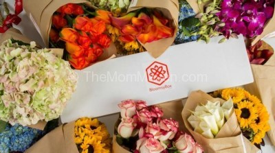 Gift Idea- BloomsyBox Flower Subscription Service
