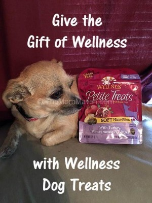 Give the gift of Wellness with Wellness Dog treats