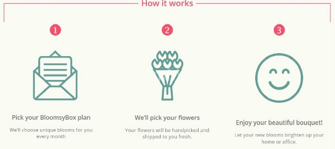bloomsbox-how it works