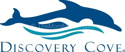 Discovery Cove now Offers Vacation Packages