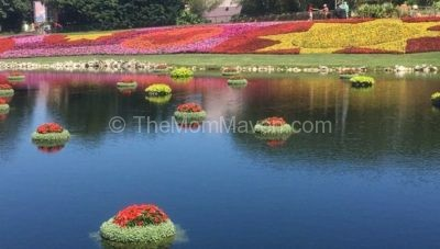 A Peek at the 2016 Epcot International Flower and Garden Festival