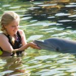 Discovery Cove Sweet Sixteen Sweepstakes