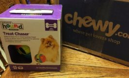 Outward Hound Treat Chaser from Chewy