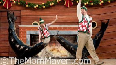 SeaWorld's Christmas Celebration 2016