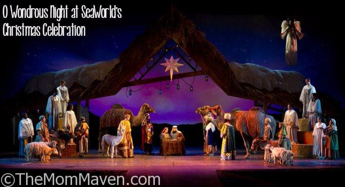 O Wondrous Night at SeaWorld's Christmas Celebration is a must-see show