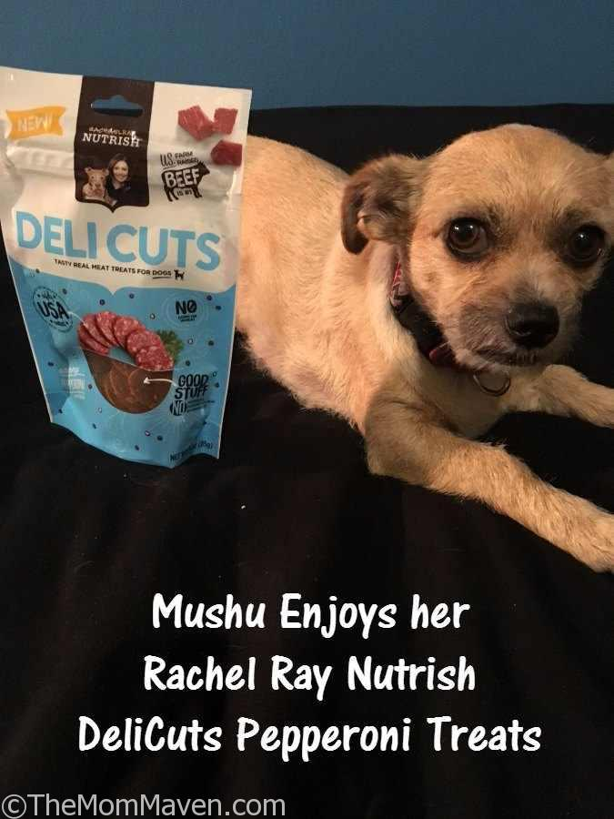 Mushu enjoys her Rachel Ray Nutrish DeliCuts Pepperoni Treats from Chewy.com