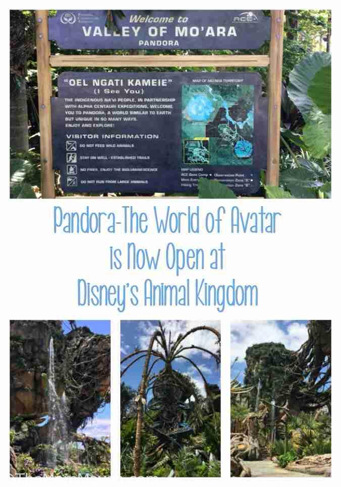 Pandora The World of Avatar is Now Open at Disney's Animal Kingdom.