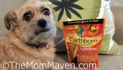 Earthborn Holistic EarthBites Cheese Flavored Dog Treats Review