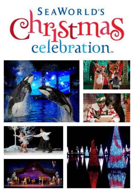 This holiday season, there are more reasons than ever to join the merriment of SeaWorld's Christmas Celebration.