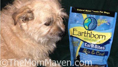 Earthborn Holistic EarthBites Skin & Coat Dog Treats