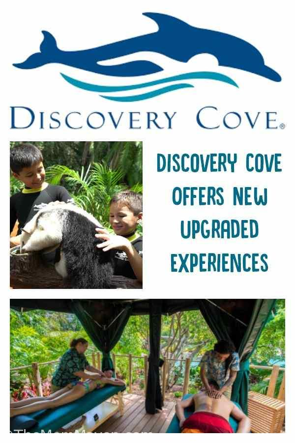 In case you were wondering if it's possible for Discovery Cove, the all-inclusive day resort in Orlando, to become more laid back and more exciting at the same time, the answer is a solid YES.