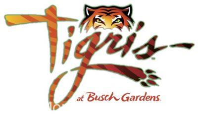 Tigris Coaster Announced for Busch Gardens Tampa in 2019