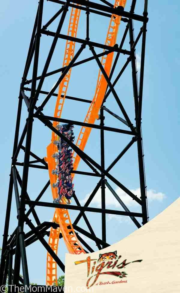 Opening Spring 2019 at Busch Gardens® Tampa Bay – Take on Tigris, Florida's tallest launch coaster, with an exhilarating triple launch, and a 150-foot skyward surge. #takeontigris