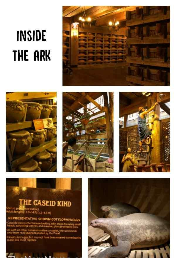 Our visit to the Ark Encounter by Answers in Genesis was insprational, educational, and thought provoking. Everyone should visit at least once.