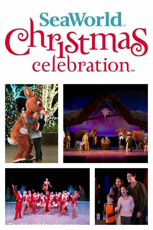 This holiday season, there are more reasons than ever to join the merriment of SeaWorld's Christmas Celebration, select days from November 17-December 31.