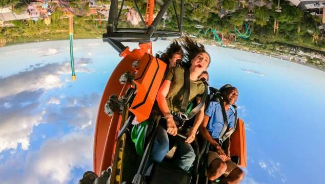 Busch Gardens® Tampa Bay will officially open Tigris, a triple-launch steel roller coaster, on Friday, April 19, 2019.