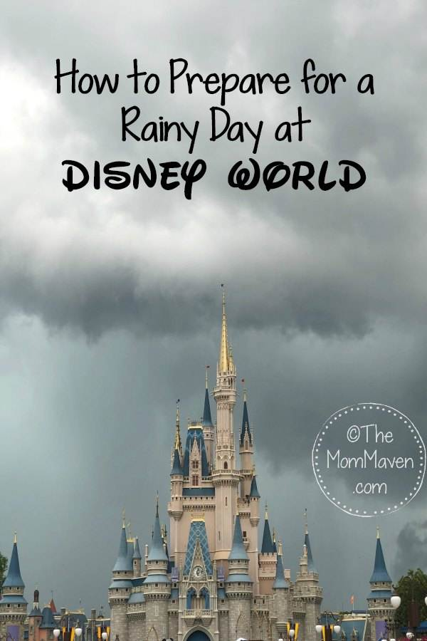 How to prepare for a rainy day at Disney World-Cinderella castle.