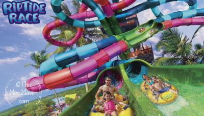 Aquatica Orlando, voted Orlando's No. 1 waterpark, is racing into 2020 with a one-of-a-kind new park attraction that will thrill park-goers—Florida's first-ever dueling water slide, Riptide Race.