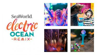 Electric Ocean Remix brings fireworks, sea lions, and summer nighttime fun to SeaWorld Orlando, weekends July 24-September 6, 2020.