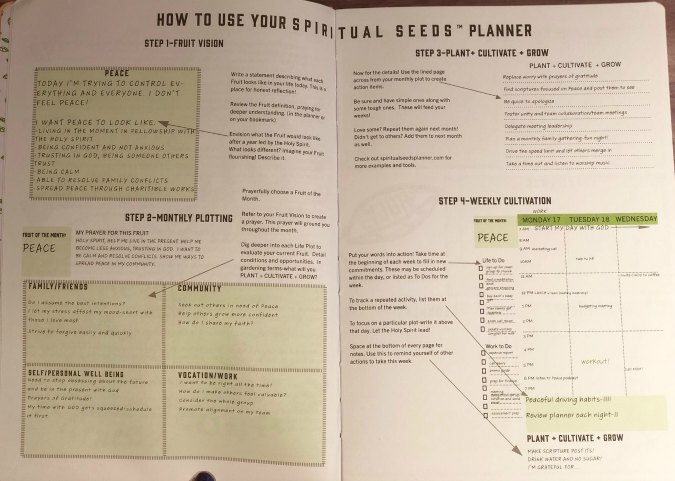 The Spiritual Seeds Planner is a wonderful, tool to keep your life organized and focus on your Christian walk at the same time.