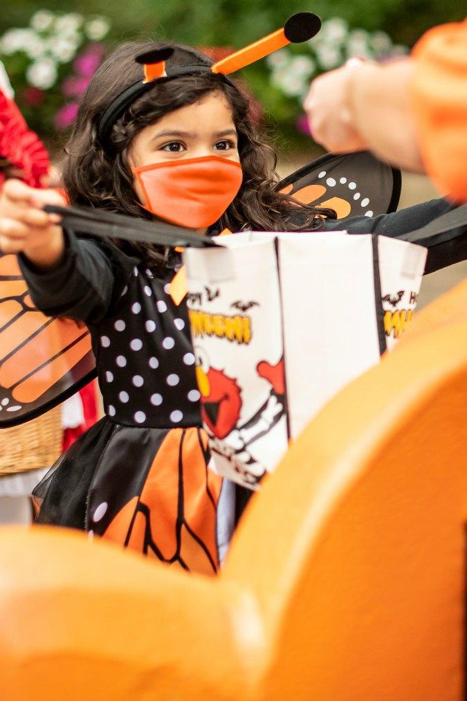 Halloween fun returns to SeaWorld Orlando this fall with  Halloween Spooktacular.