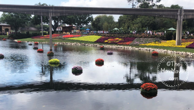 photo from 2019 EPCOT International Flower and Garden Festival